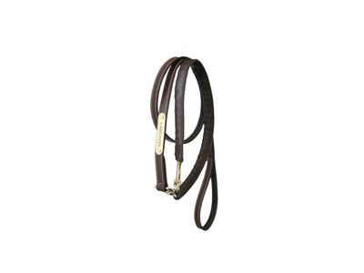 Kentucky Leather Lead - Covered Chain - 2.7m