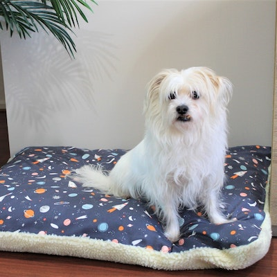 """Queenie's Pawprints Eco Pet Bed """"Perfect Snooze Cushion"""" - Space Travellers"""