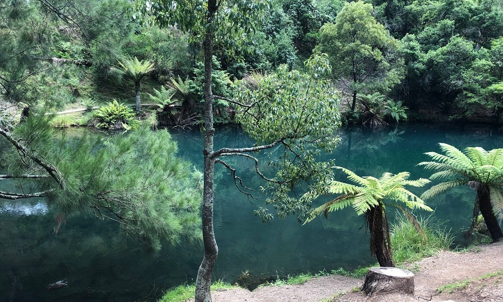 blue-lake-jenolan-caves-jpg