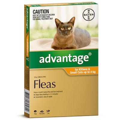 Advantage Cat & Kitten 0-4kg Orange Spot On Flea Treatment - 3 Sizes