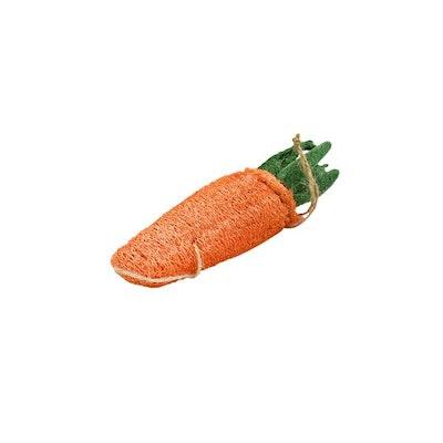 DoggyTopia Loofah Carrot Dental Toy