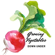 Growing Vegetables Down Under