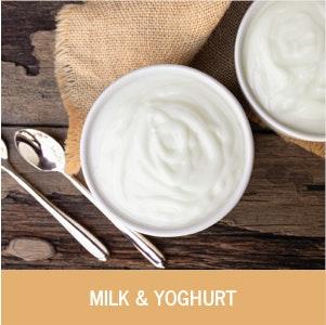 Milk and Yoghurt Category