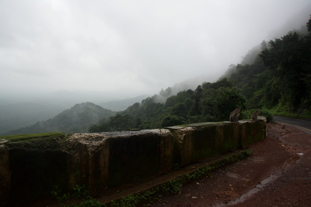 rain lashes the mountains  india