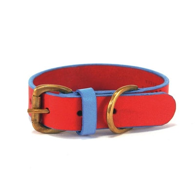 Georgie Paws Jersey - Red + Blue