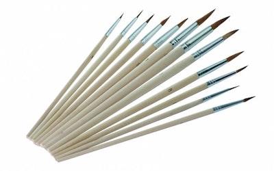 Troton Brushes - Set Of 12