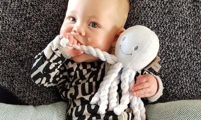 Nattou Octopus Reviews   Real Mums, Real Feedback