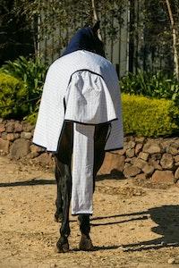 Diamond Deluxe Horsewear Cotton Ripstop Tailbags