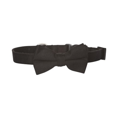 Hamish McBeth Bow Tie Dog Collar - Black