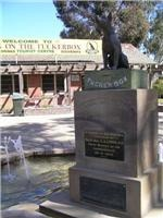 Gundagai district family teach the Tuckerbox Dog new tricks