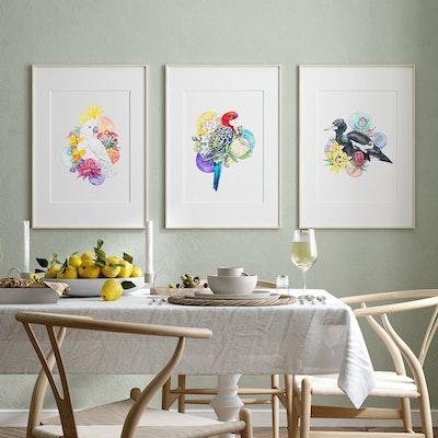 Watercolour by Cat Set of 3 A4 Australian Birds fine art print