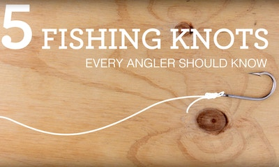 5 Basic Fishing Knots Every Angler Should Know