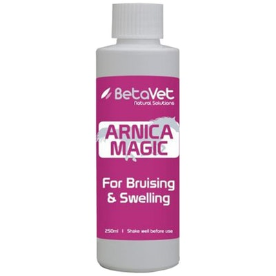 BETAVET Natural Solutions Horse Arnica Magic Muscle Tendon 250ml
