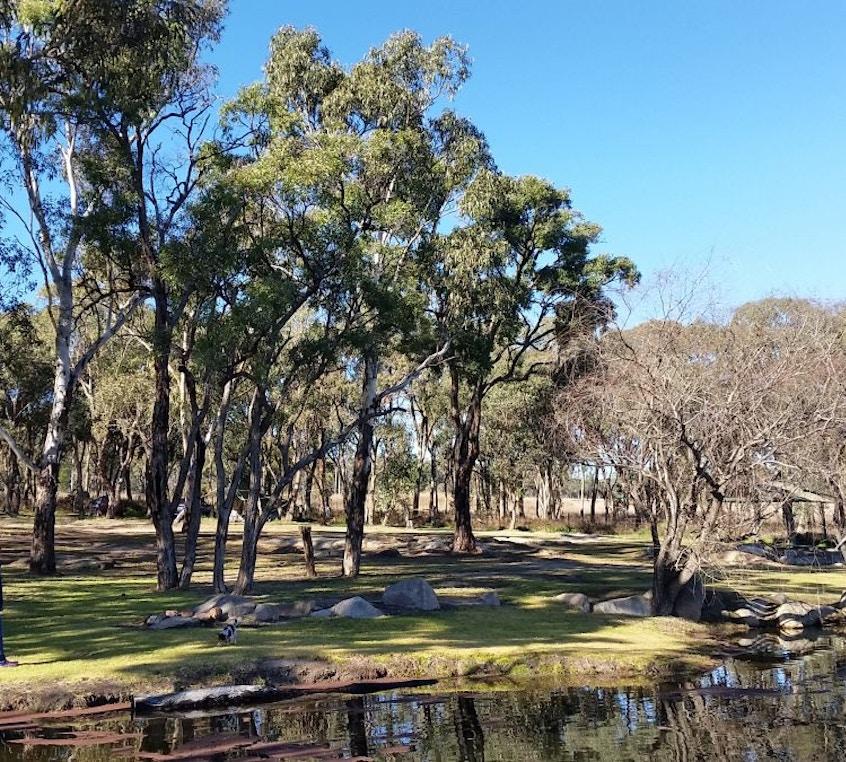 Bush Camping (Unpowered), Campsites
