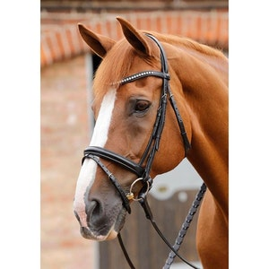 Premier Equine Bellissima Bridle With Diamante Brow Band