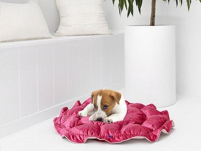Mariska Hand Made Pink & Gold Velvet Pet bed