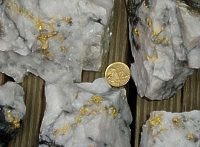 Extremely high gold grade in quartz reef, courtesy Beaconsfield Gold NL
