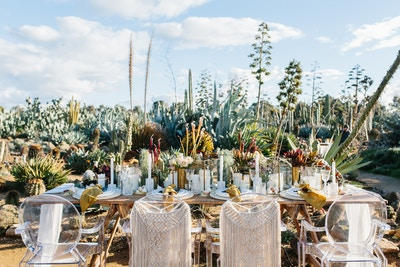A CACTUS FILLED WEDDING