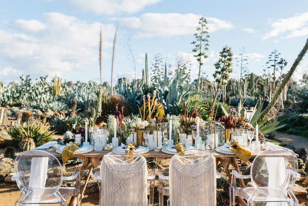 LENZO Boho Cactus Wedding