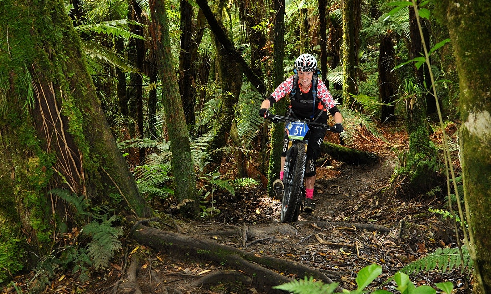 mountain biker nz bush