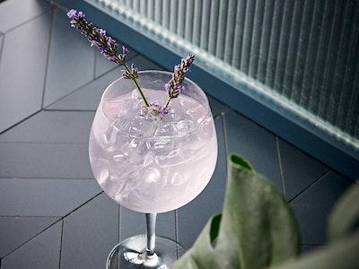 Lavender Gin Spritz (6 serves)