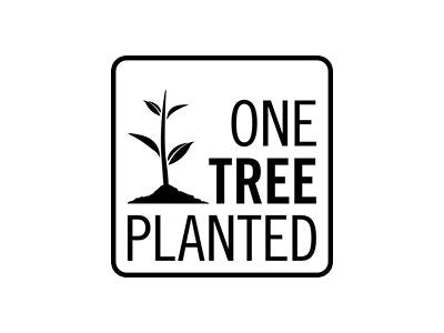 TreeKid Tree to be Planted