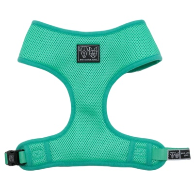 Big & Little Dogs Classic Harness Teal
