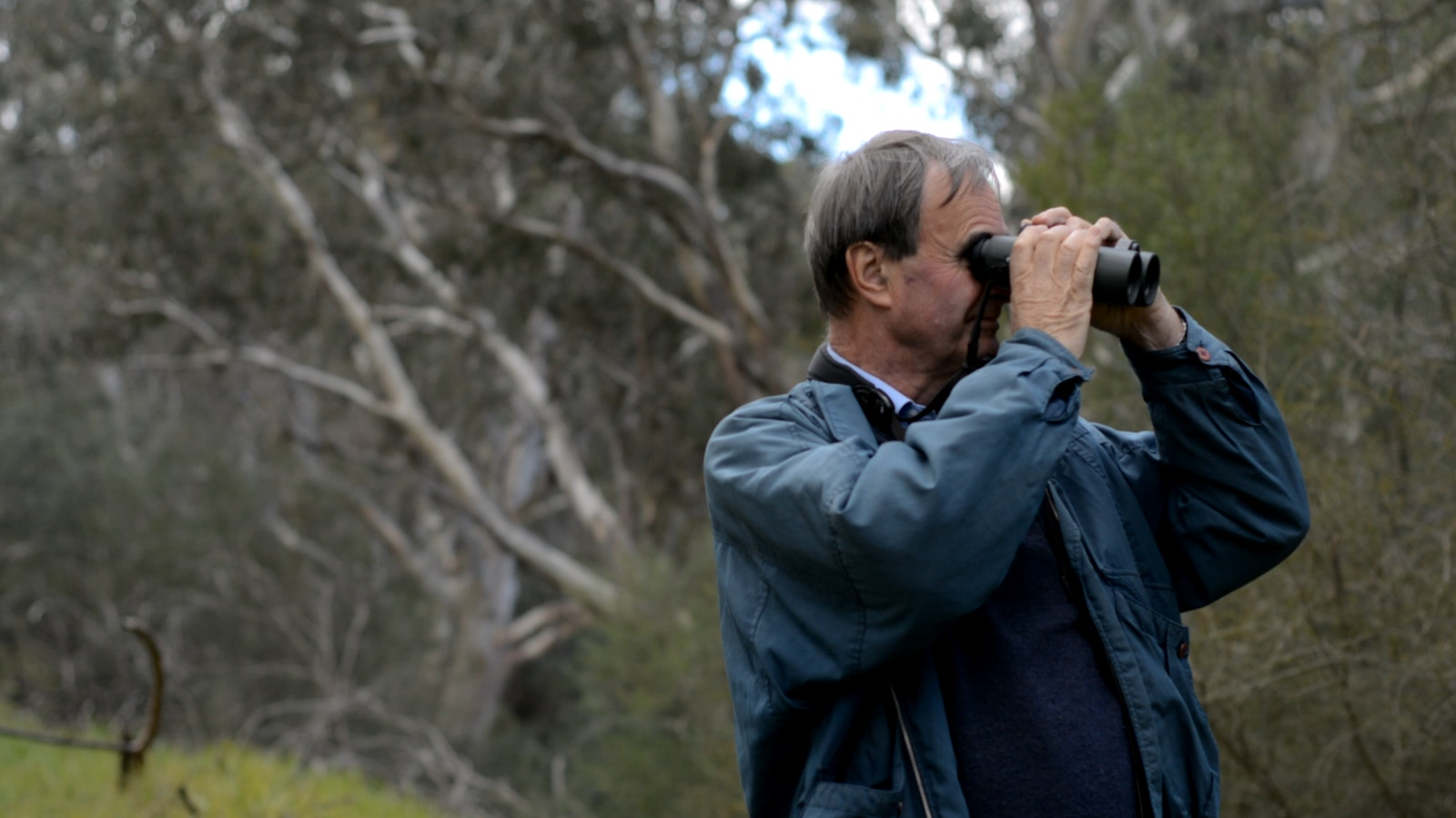 Bird watching in the Victorian Alps