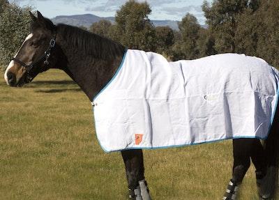 Capriole Equestrian Flag Cloth Rug