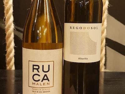 White Wine Match - Peruvian Journey
