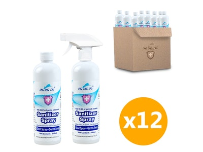 WH Safe *Wholesale* Alcohol-Free Disinfectant Sanitiser Spray (500mL) - 12 Units