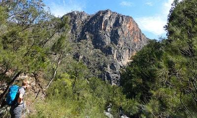 Hiking Bungonia Gorge