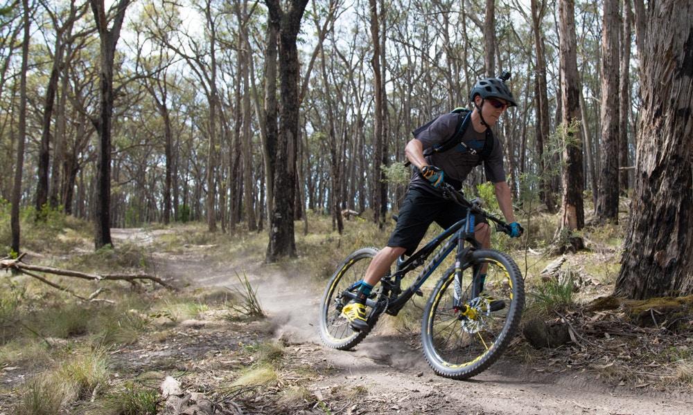 Cross Country Mountain Biking in Canadian Forest, Ballarat