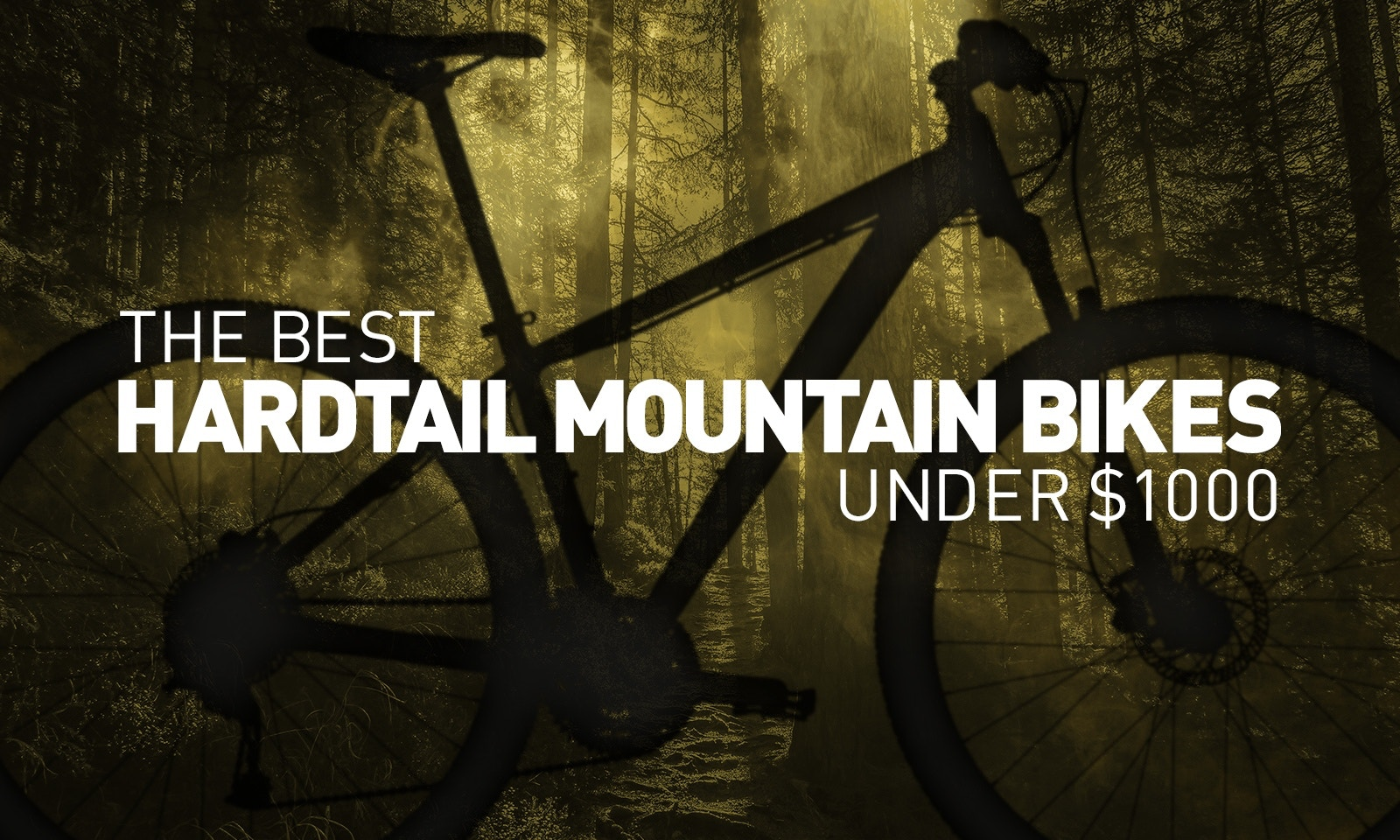 Best Hardtail Mountain Bikes of 2017 for under $1,000