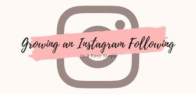 Growing An Instagram Following In Three Easy Steps