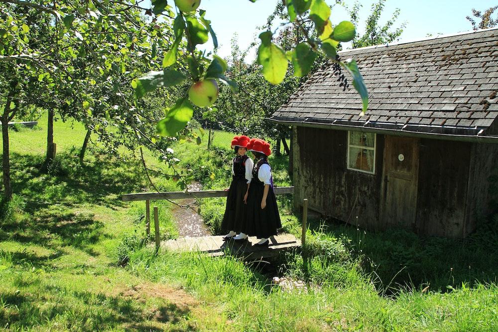 rennrad-schwarzwald_hotz-schwarzwald-tourismus_bollenhutmaedle_klein-jpg