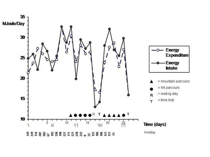 display energy expenditure vs intake