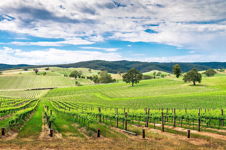 A Guide to South Australia
