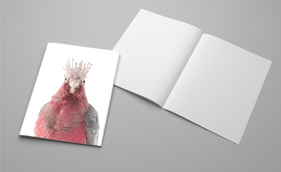 Sid the Galah, A5 Notebook
