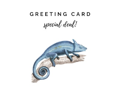 Greeting Card Special Deal Random Selection of Cards for ONLY Twenty Bucks
