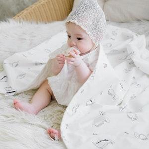 Bebenuvo Double Blanket - Dinosaur
