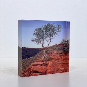 ON THE EDGE - Acrylic Desk Block