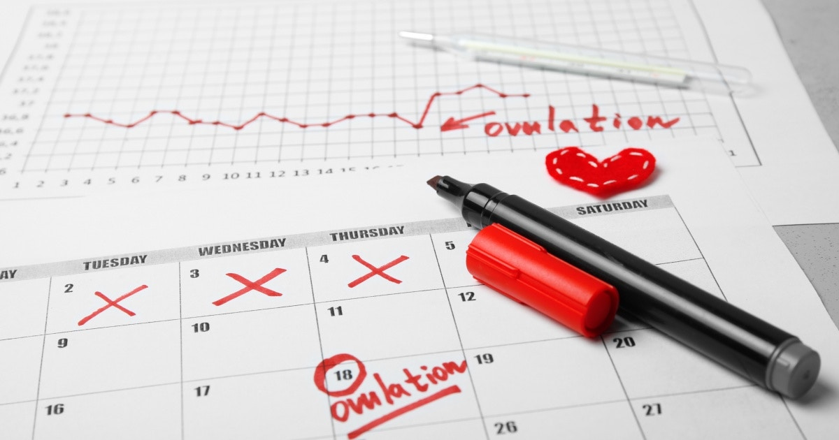 The Importance of Tracking your Monthly Cycle