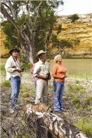 Birdwatching goes into high gear in August on the Murray courtesy Capt Cook Cruises