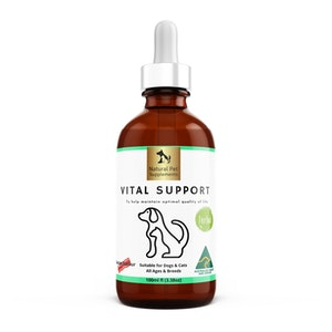 Natural Pet Supplements Vital Support Herbal Tincture for Dogs and Cats High Strength 100ml