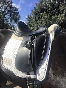 Prestige Helen K Dressage saddle