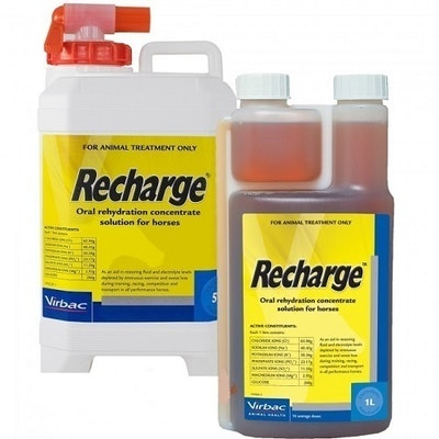 Virbac Recharge Horses Oral Rehydration Concentrate Solution - 2 Sizes