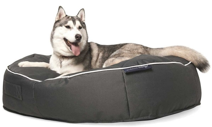 extra-large-dog-bed-jpg