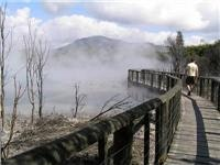 Boardwalk Rotorua thermal pools