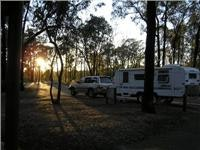 Rise and shine Ironbark Rest Area Hume Hwy